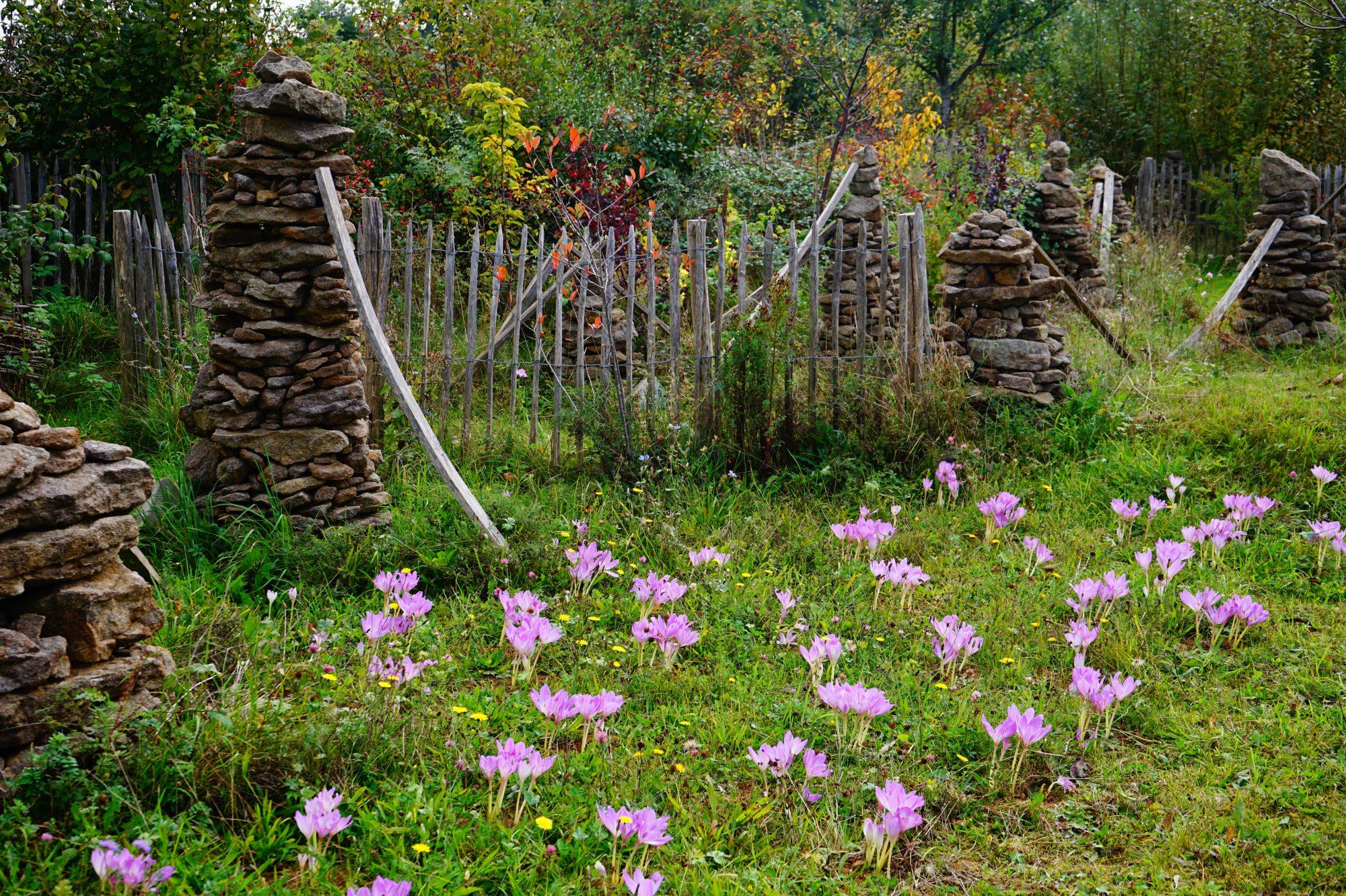 15. September – Vortrag und Diskussion mit Markus Gastl zum Hortus Garten